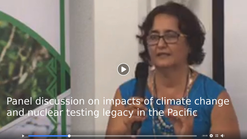 Panel discussion on impacts of climate change and nuclear testing legacy in the Pacific