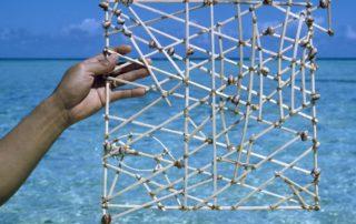 Micronesian Stick Chart